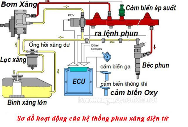 Nguyên lý hoạt động của Ecu