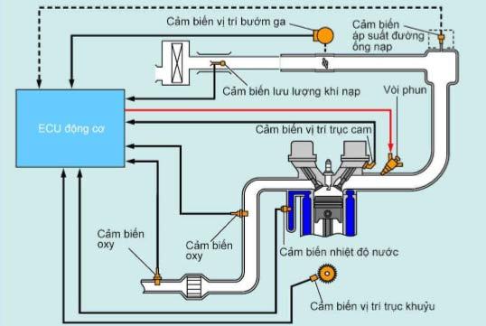 Cấu tạo hệ thống phun xăng điện tử
